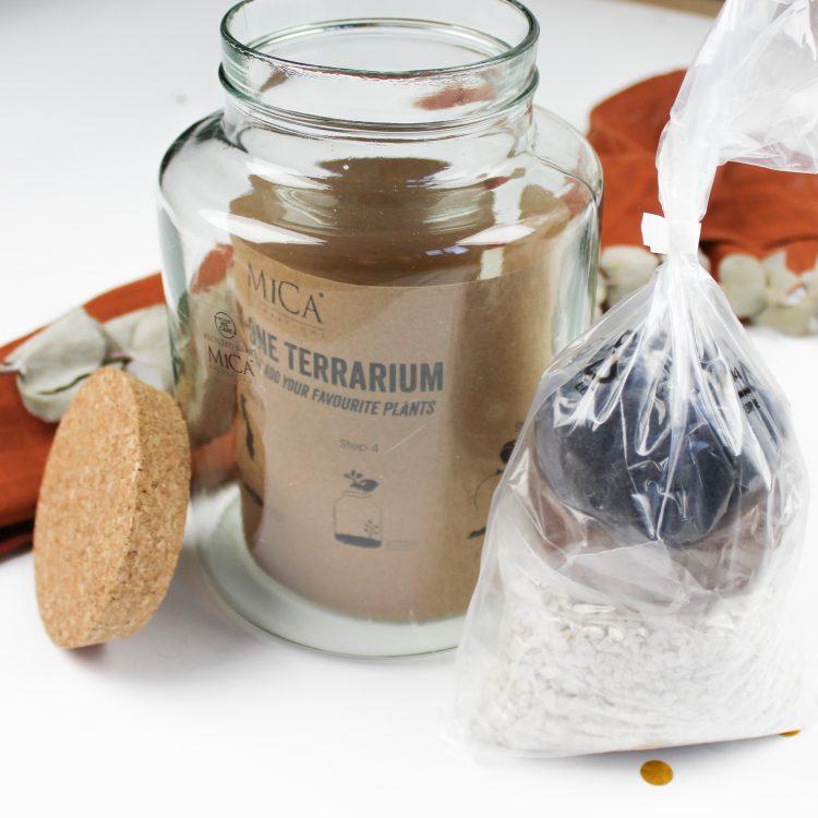 ideefabriek diy plant stekje housewarming cadeau terrarium diy
