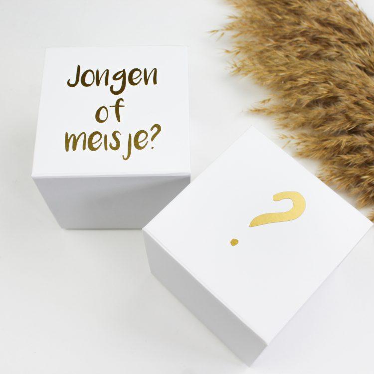 onthullingsbox ballonbox ideefabriek geslacht gender reveal jongen meisje ballon pregnant