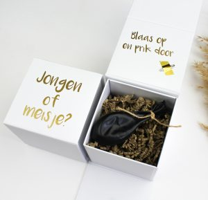 onthullingsbox ballonbox ideefabriek geslacht gender reveal ballon jongen meisje ballon pregnant